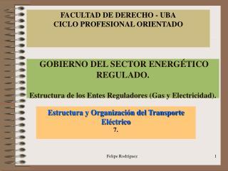 GOBIERNO DEL SECTOR ENERGÉTICO REGULADO. Estructura de los Entes Reguladores (Gas y Electricidad).