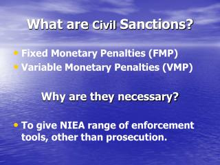 What are  Civil  Sanctions?