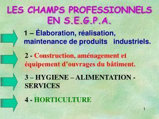 LES CHAMPS PROFESSIONNELS EN S.E.G.P.A.