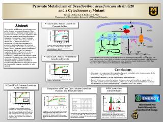 Pyruvate Metabolism of  De s ulfovibrio desulfuricans  strain G20