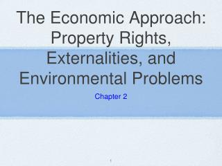 The Economic Approach: Property Rights, Externalities, and Environmental Problems