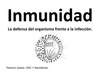 Inmunidad La defensa del organismo frente a la infección.