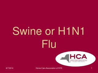 Swine or H1N1  Flu