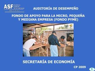 FONDO DE APOYO PARA LA MICRO, PEQUEÑA Y MEDIANA EMPRESA (FONDO PYME)