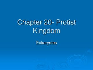 Chapter 20- Protist Kingdom
