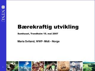 Bærekraftig utvikling Sumhuset, Trondheim 15. mai 2007