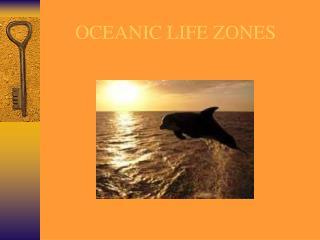 OCEANIC LIFE ZONES