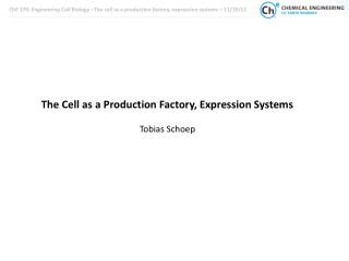 The Cell as a Production Factory, Expression Systems Tobias  Schoep