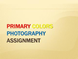Primary Colors Photography  Assignment