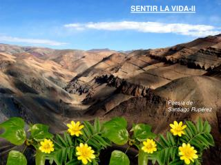 SENTIR LA VIDA-II