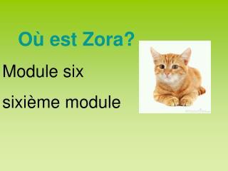 Où est Zora? Module six sixième module