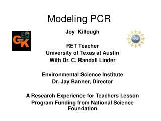 Modeling PCR