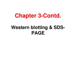 Chapter 3-Contd.  Western blotting  SDS-PAGE