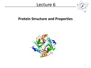 Protein Stability and Electrostatic Interactions