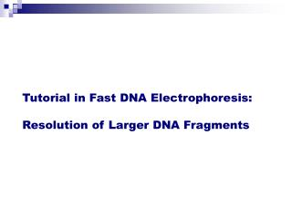 Tutorial in Fast DNA Electrophoresis:  Resolution of Larger DNA Fragments