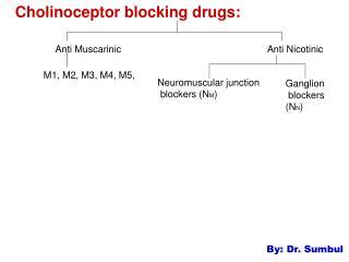 Cholinoceptor blocking drugs: