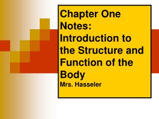 Chapter One Notes: Introduction to the Structure and Function of the Body Mrs. Hasseler