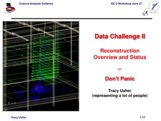 Data Challenge II Reconstruction Overview and Status -or- Don't Panic Tracy Usher