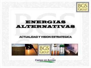 ENERGIAS ALTERNATIVAS ACTUALIDAD Y VISION ESTRATEGICA