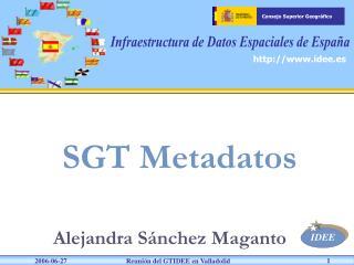 SGT Metadatos