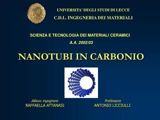 NANOTUBI IN CARBONIO