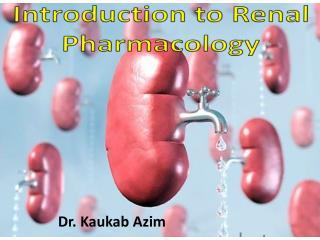Dr.  Kaukab Azim