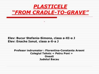 Profesor indrumator : Florentina-Constanta Arseni