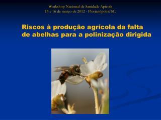 Workshop Nacional de Sanidade Apícola 15 e 16 de março de 2012 - Florianópolis/SC.