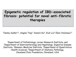 Epigenetic regulation of IBD-associated fibrosis: potential for novel anti-fibrotic therapies