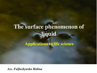 The surface phenomenon of liquid