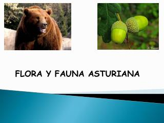 FLORA Y FAUNA ASTURIANA