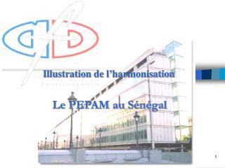 Le PEPAM au Sénégal