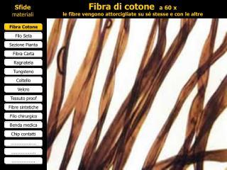 Fibra di cotone  a 60 x le fibre vengono attorcigliate su sé stesse e con le altre