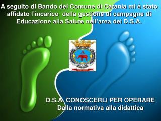 D.S.A. CONOSCERLI PER OPERARE Dalla normativa alla didattica