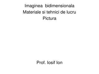 Imaginea  bidimensionala Materiale si tehnici de lucru Pictura Prof. Iosif Ion