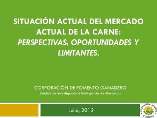 Situaci�n Actual del Mercado Actual de la Carne:  Perspectivas, Oportunidades y Limitantes.