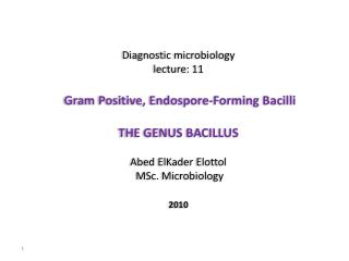 Diagnostic microbiology lecture:  11 Gram Positive,  Endospore -Forming Bacilli THE GENUS BACILLUS