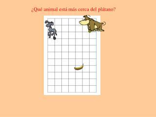 ¿Qué animal está más cerca del plátano?