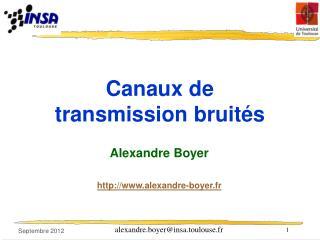 Canaux de transmission bruités