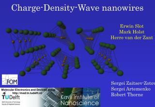 Charge-Density-Wave nanowires