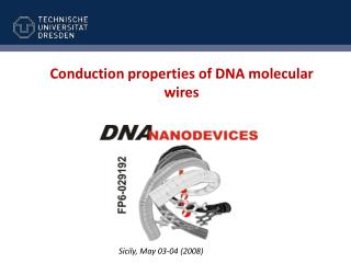 Conduction properties of DNA molecular wires