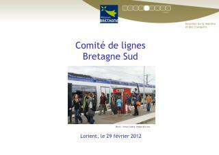 Comité de lignes  Bretagne Sud