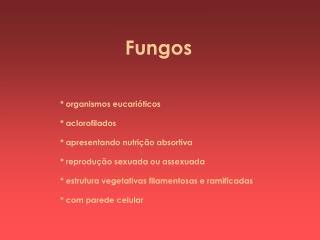 * organismos eucarióticos * aclorofilados * apresentando nutrição absortiva