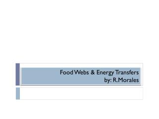 Food Webs & Energy Transfers by:  R.Morales