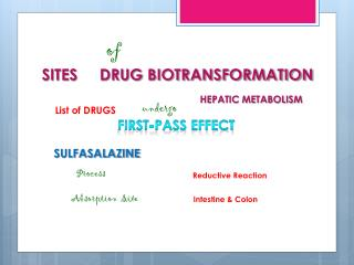 SITES     DRUG BIOTRANSFORMATION