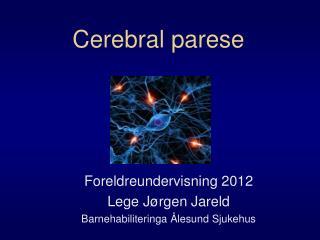 Cerebral parese