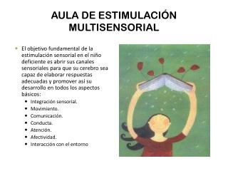 AULA DE ESTIMULACI�N MULTISENSORIAL