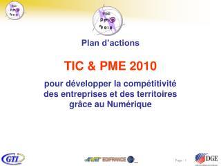 TIC&PME  2010