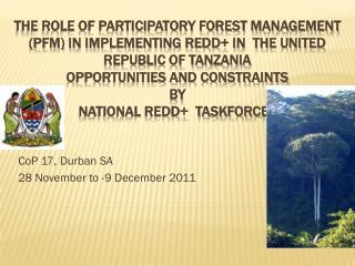 CoP 17, Durban SA  28 November to -9 December 2011