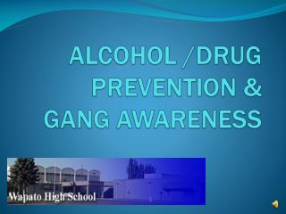 ALCOHOL /DRUG PREVENTION &  GANG  AWARENESS